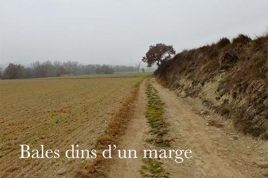 bales-dins-del-marge-Jordi-Lafon-0